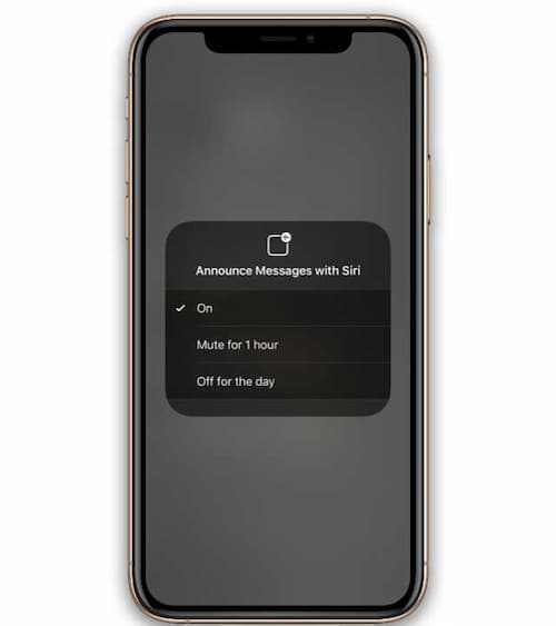 mute messages with siri