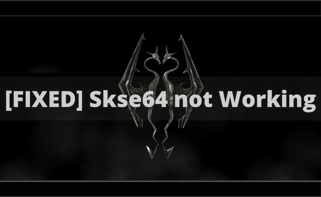 skse64 not working