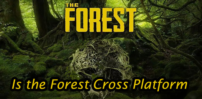 Is the Forest Cross Platform